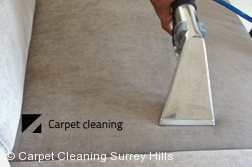 Upholstery Cleaners Surrey Hills 3127
