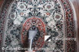 Surrey Hills 3127 Rug Cleaners