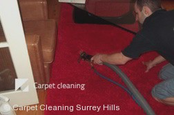 Rug Cleaning Company Surrey Hills 3127