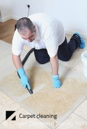 Dry Carpet Cleaners Surrey Hills 3127