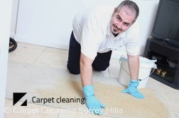 Surrey Hills Dry Carpet Cleaning  Services