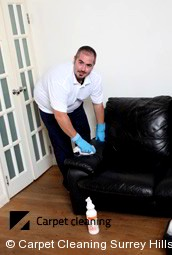 Leather Cleaning Services Surrey Hills 3127