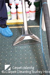 Professional Deep Carpet Cleaning in Surrey Hills