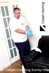 Surrey Hills 3127 Leather Cleaners