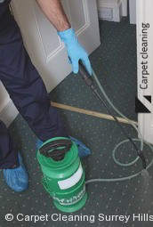 Surrey Hills Steam Carpet Cleaners 3127